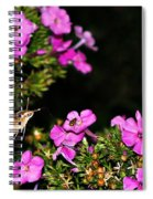 The Butterfly Garden At Night Spiral Notebook