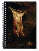 The Carcass Of An Ox, Late 1630s Spiral Notebook