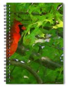 The Cardinal 2 Painterly Spiral Notebook
