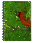 The Cardinal Painterly Spiral Notebook