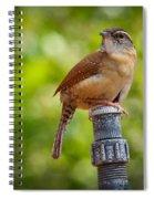 The Carolina Wren Spiral Notebook