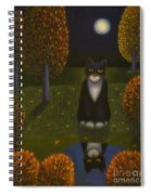 The Cat And The Moon Spiral Notebook