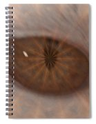 The Cat Eye Spiral Notebook