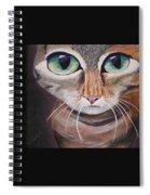 The Cat Spiral Notebook