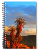 The Cerbat Foothills Spiral Notebook