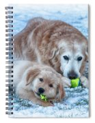 The Changing Of The Guard Spiral Notebook