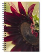 The Child Of Nature Spiral Notebook