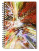 The Cleansing Spiral Notebook