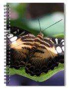 The Clipper 01 Spiral Notebook