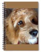 The Closeup Spiral Notebook