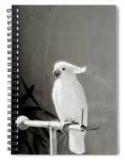 The Cockatoo Spiral Notebook
