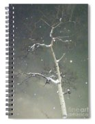 The Cold Bones Of Trees At Night Spiral Notebook