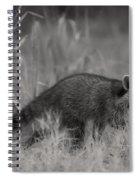 The Coon Walk Spiral Notebook