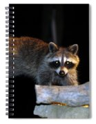 The Cornbread Bandit Homestretch Spiral Notebook