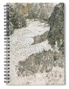 The Corner Of The Park Spiral Notebook