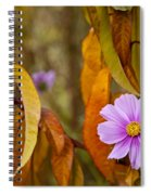 The Cosmos In The Peach Tree Spiral Notebook