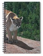 The Cougar 1 Spiral Notebook
