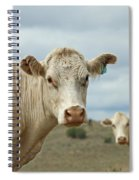 The Cows Spiral Notebook