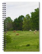 The Cows Of May Spiral Notebook