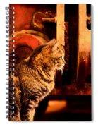 The Crane Yard Cat Spiral Notebook