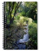 The Creek At Finch Arboretum 2 Spiral Notebook