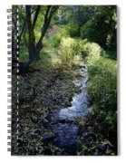 The Creek At Finch Arboretum Spiral Notebook