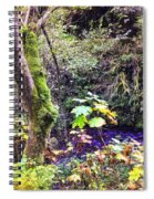 The Creek Spiral Notebook