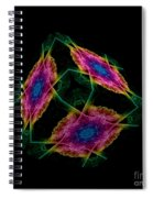 The Cube 2 Spiral Notebook