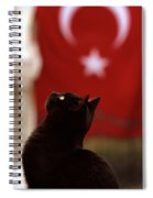 The Curious Cat Spiral Notebook