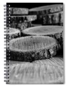 The Cuttings II Spiral Notebook