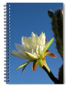 The Daily Bloom Spiral Notebook