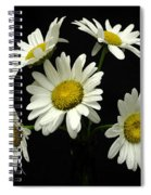 The Daisy Five  Spiral Notebook