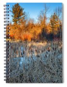 The Dance Of The Cattails Spiral Notebook
