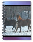 The Dancing Paso Fino Stallions Spiral Notebook