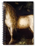 The Dapple-grey Spiral Notebook