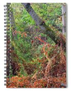 The Deep Rainy In The Mysterious Forest Spiral Notebook