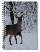The Deer In The Snow Spiral Notebook