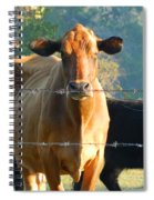 the Defiant One Spiral Notebook