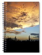 The Desert Sky  Spiral Notebook