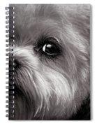 The Dog Next Door Spiral Notebook