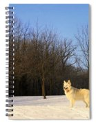 The Dog On The Hill Spiral Notebook