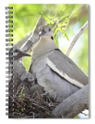The Dove Family  Spiral Notebook