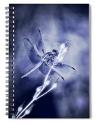 The Dragonfly  Spiral Notebook