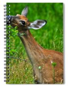 The Dreaded Deer Giraffe Spiral Notebook