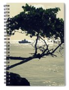 The Dream Still Alive Spiral Notebook