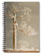 The Dreaming Tree Spiral Notebook