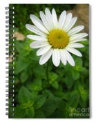 Natures Tear  Drops Spiral Notebook