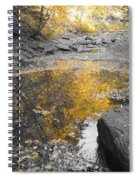 The Dry Creek Bed Spiral Notebook