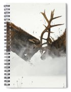 The Duel Of Fighting Elk Spiral Notebook