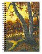 The Elders Spiral Notebook
